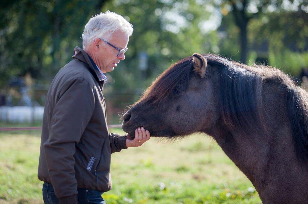 Paardadvies-Tessa-Denn-paarden-coaching-Myra-Wippler-11.jpg