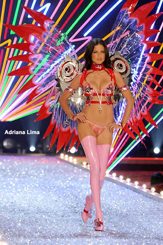Adriana's Anime Wings