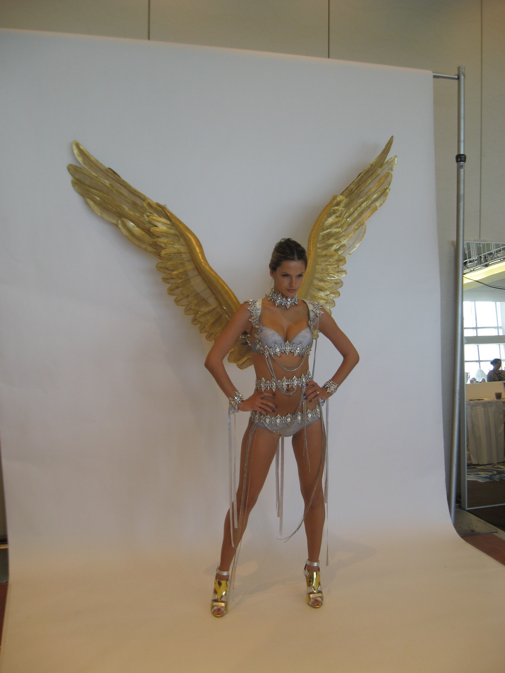 Alessandra's Gold Wings
