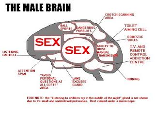 Brain chemicals cortisol orgasm photo 92