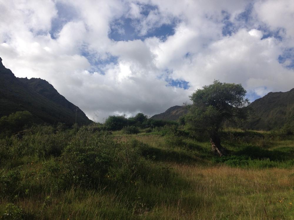 Hike to Puma Marku