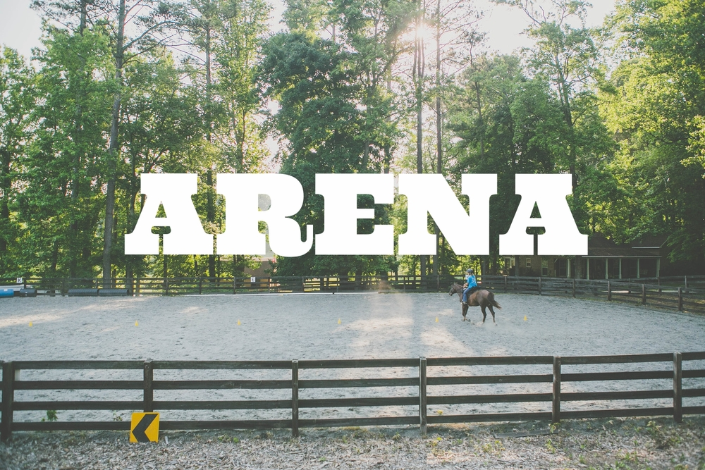 Arena - 150'x75' arena great for any basic schooling