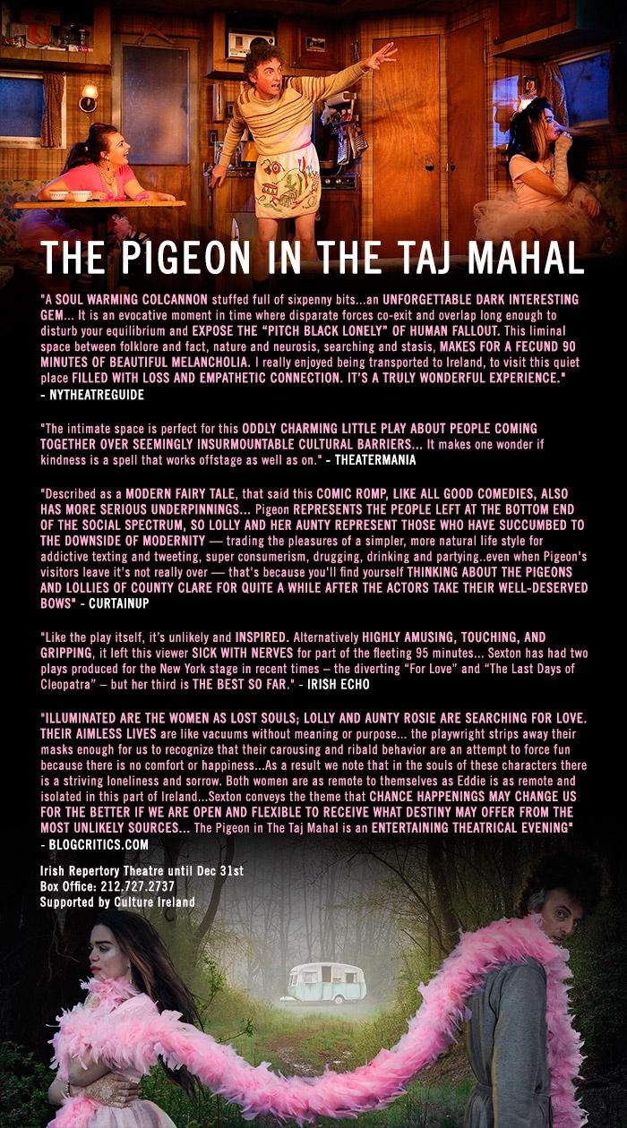 Pigeon-reviews-01.jpg