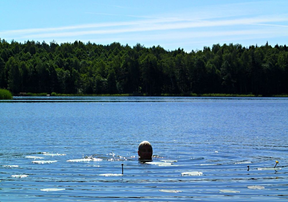 Patty swimming among the lilies in the Pojezierze Mazurskie (Masurian Lake District).