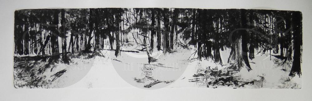 'Backwoods I'  2011