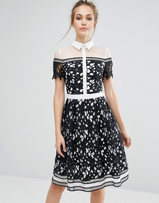 ASOS Chi Chi london premium lace paneled dress with contrast collar
