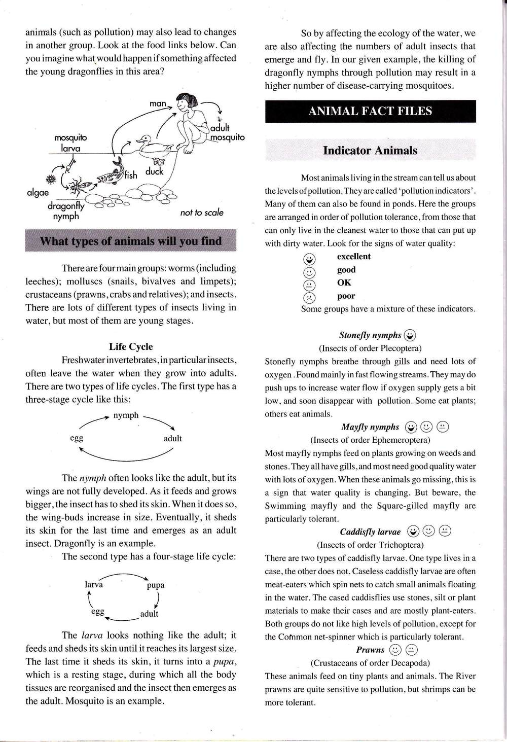 A Guide to Freshwater Invertabrate 2_Page_2.jpg