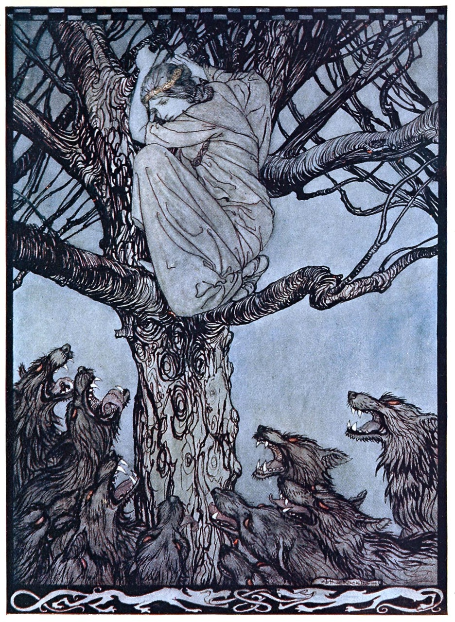 oldbookillustrations :      She looked with angry woe at the straining and snarling horde below.    Arthur Rackham, from  Irish fairy tales , by James Stephens, London, 1920.   (Source:  archive.org )