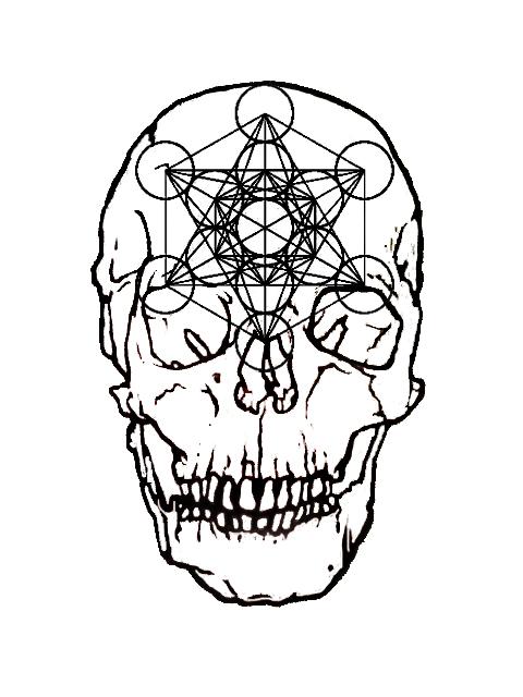 heykillah :     Metatron skull illustration I did.