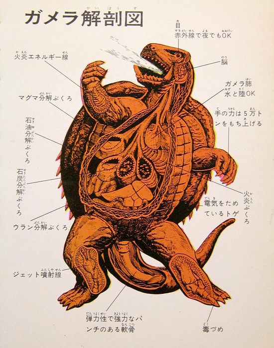 Illustrated anatomy of Gamera and foes.   Via www.pinktentacle.com/2011/01/illustrated-anatomy-of-gamera-and-foes/