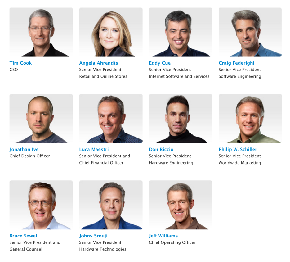 Apple's homogenous board