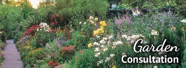 garden consultation.jpg