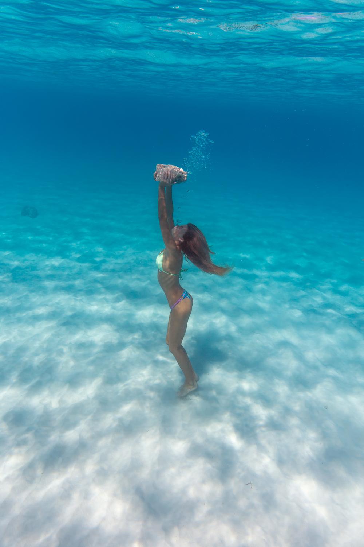 underwater675.jpg