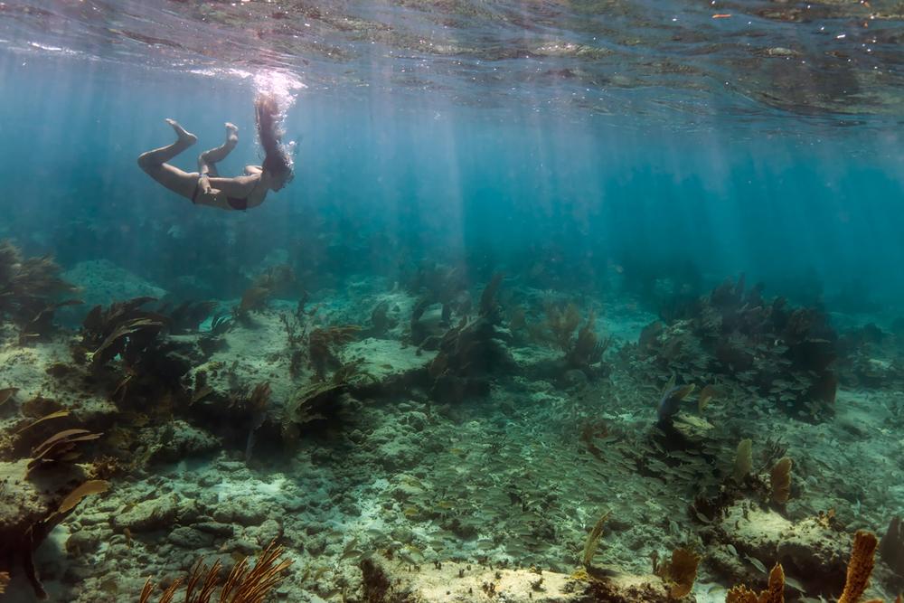 underwater166.jpg