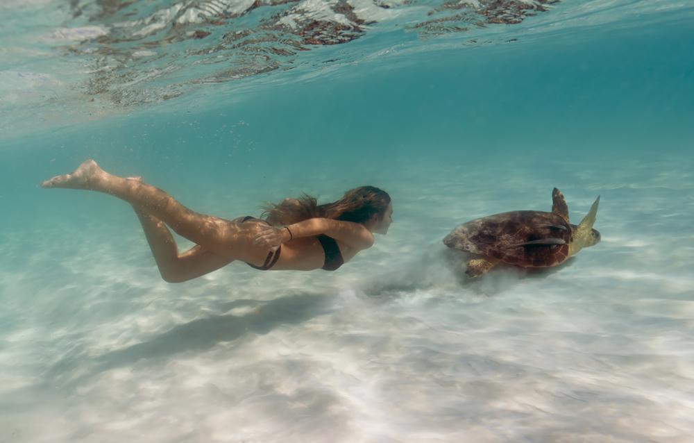 turtle_girl