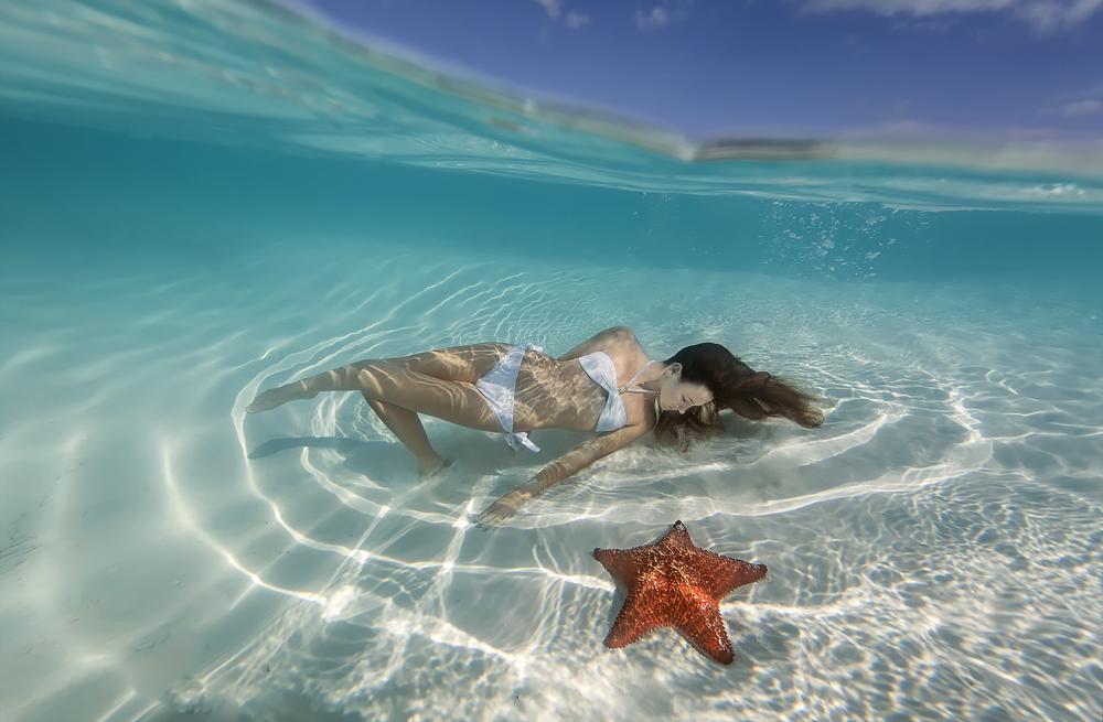 starfish_bahamas.jpg