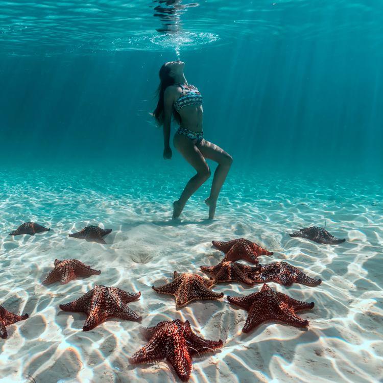 bahamas006.jpg