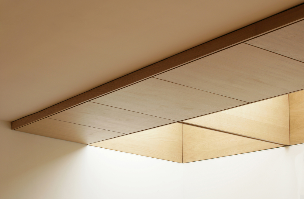 hall rooflight high res.jpg