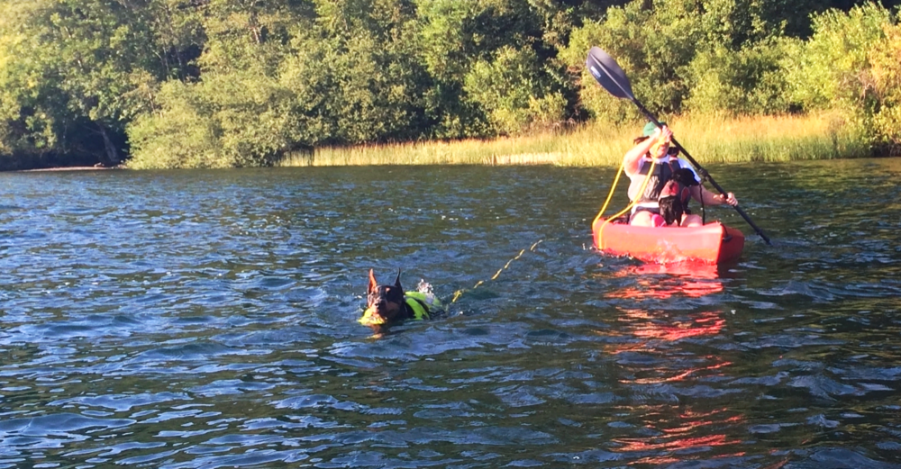 Swimming on Cascade Lake. Kane in the water & Sophie in the Kayak.