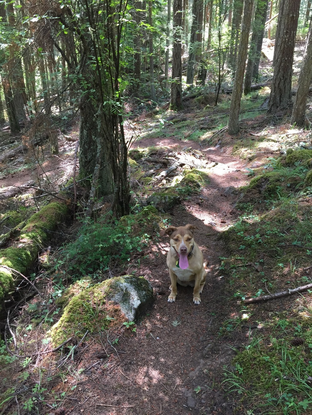Enjoying a hike on Orcas Island.