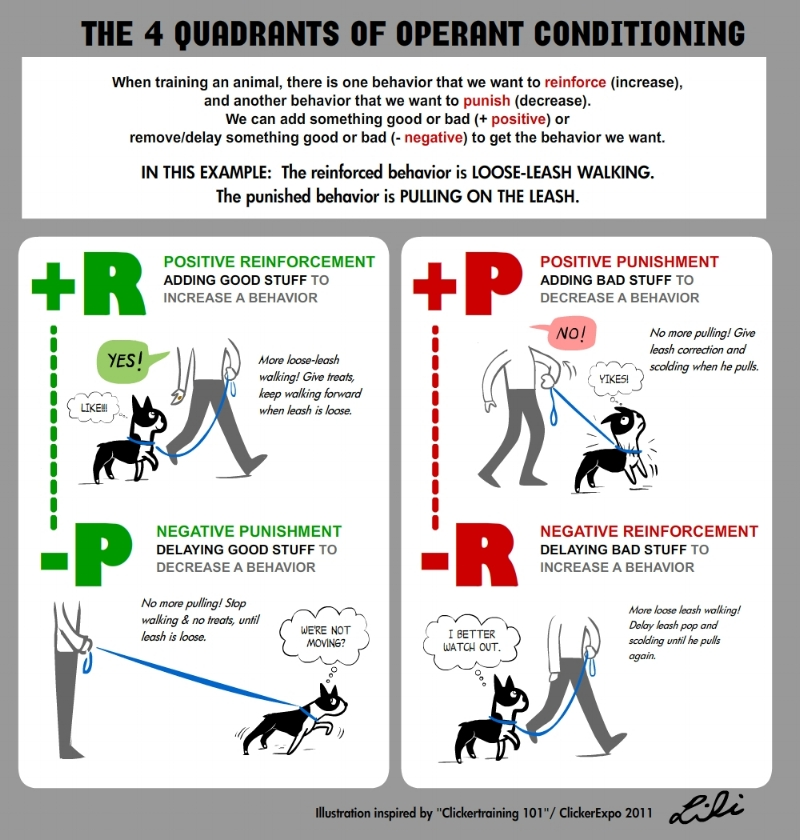 The 4 Quadrants of Operatant Conditioning.jpg