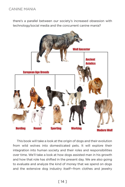 Canine Mania v6 14.jpg