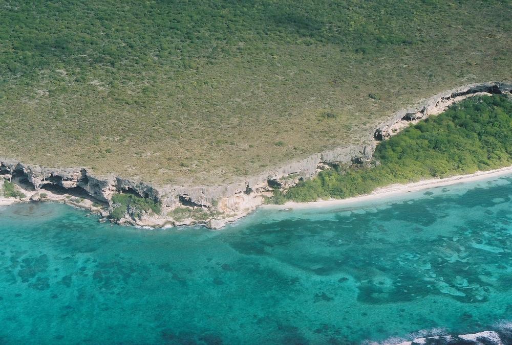 Mona island cliff. Photo: Pamy Rojas