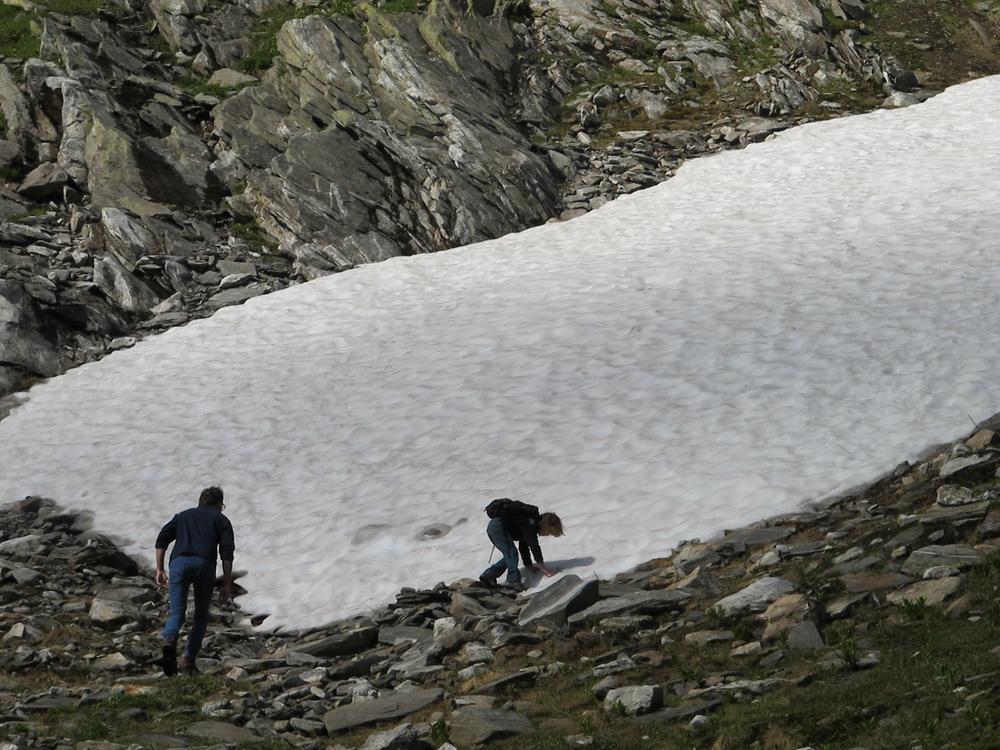El glaciar Maighels se encuentra actualmente dividido en dos partes, consecuencia del deterioro que afecta los glaciares de la región. Foto:Bruny Nieves