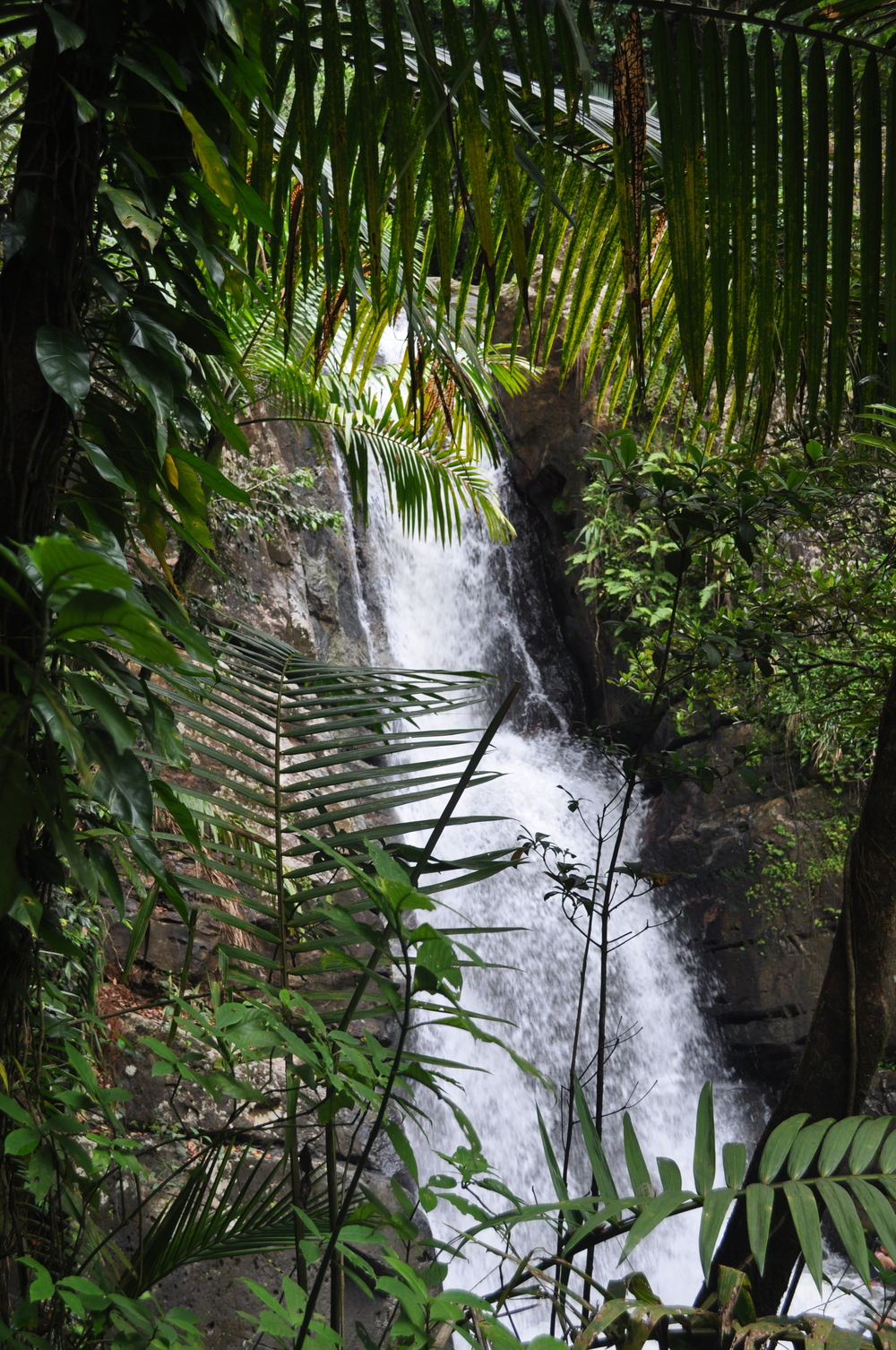 La Mina waterfall. Photo: Pamy Rojas