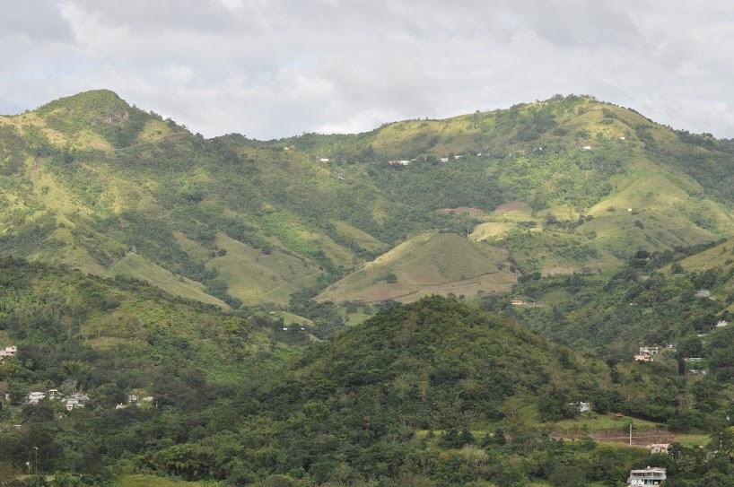 La carretera 14 nos llevó hasta el pueblo más alto de Puerto Rico, Aibonito, localizado en la región de las flores de la Ruta Panorámica. Foto: Pamy Rojas