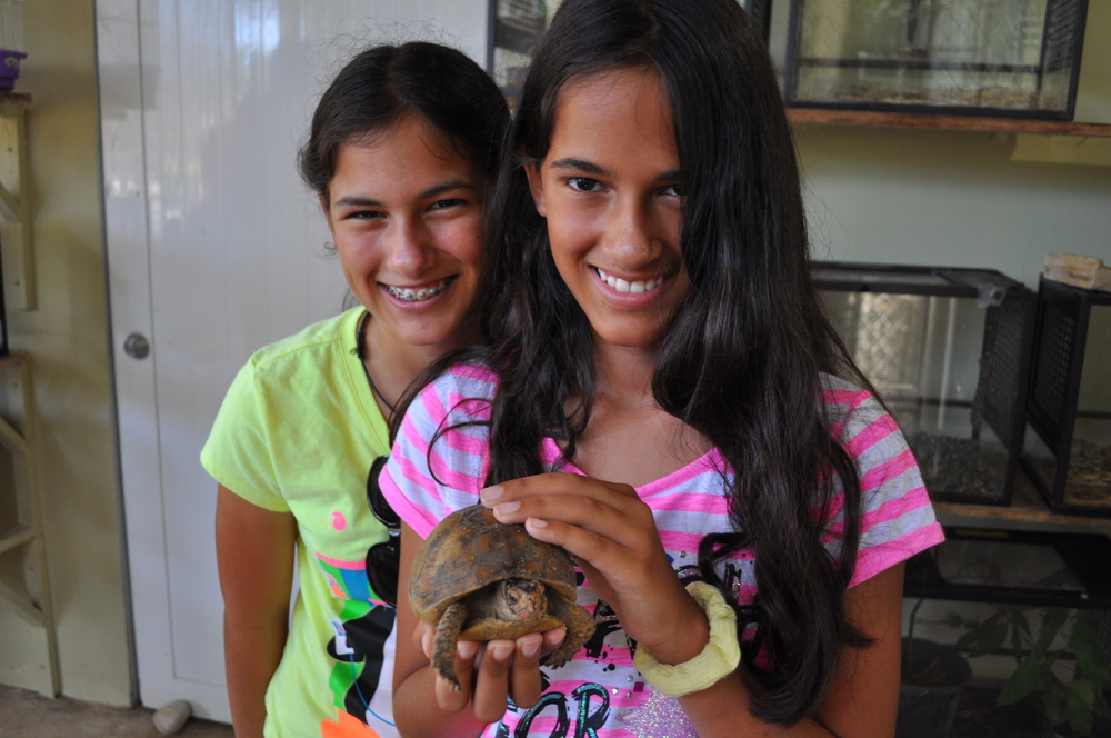 Turtles, snakes, and monkeys are some of the animals you can see there. Photo: Pamy Rojas
