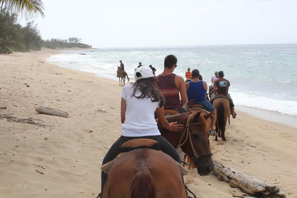 In our horseback riding tour, we reached Survival Beach. Photo: Javier Vélez
