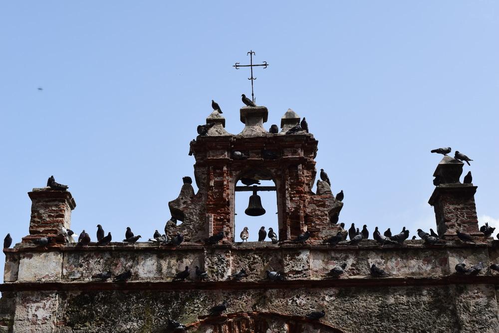 La capilla del Cristo está al final de la calle Cristo, frente al Parque de la Palomas. Ya sabes por qué tanta paloma...Foto: Josean Reyes Mendoza