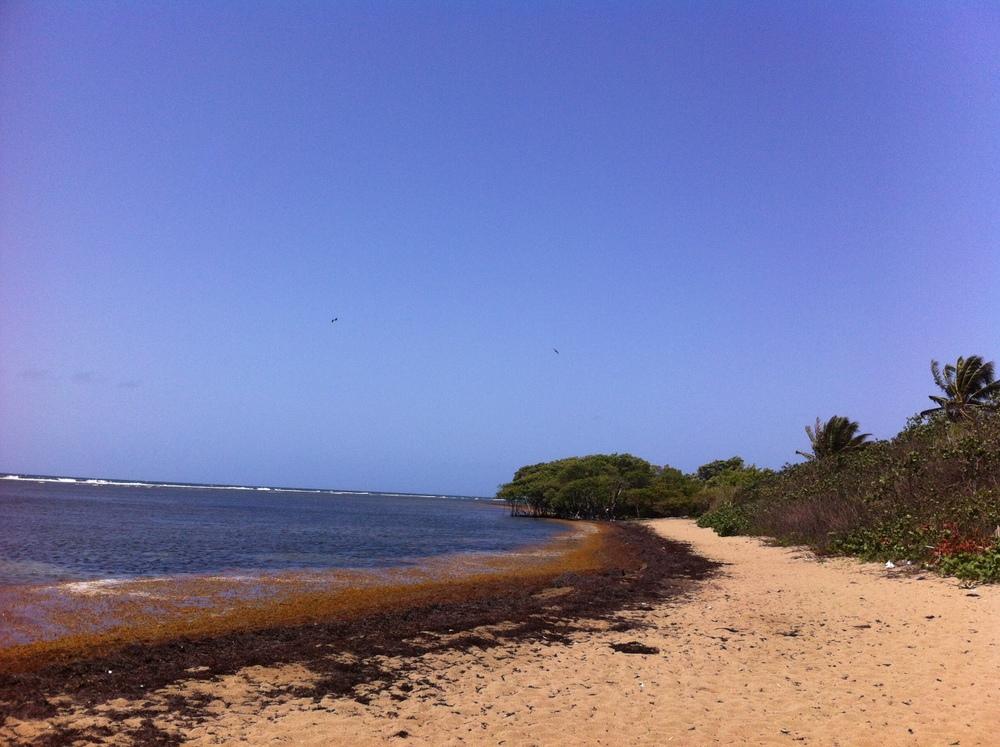 Parte del entorno natural encantado del pueblo brujo son sus playas. Con un viento perfecto para practicar el deporte del kitesurfing, los locales buscan promover la playa conocida como Kite Beach entre los entusiastas de este deporte. Foto: Bruny Nieves