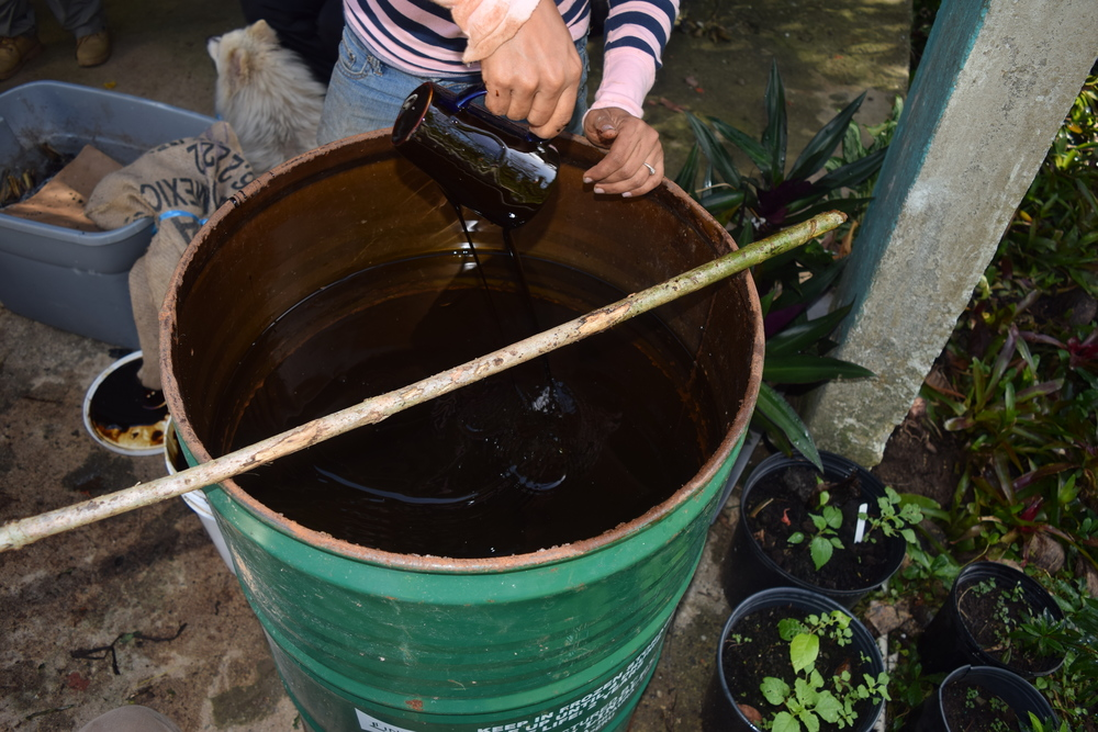 The molasses of the sugar cane and the worm humus are completely natural fertilizers. Photo: Alejandro Rodz. Rojas