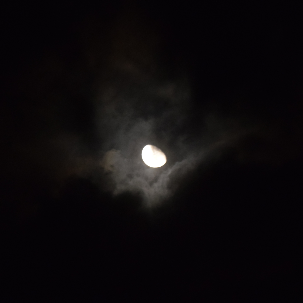 The only ilumination during the nights was the moon. Photo: Alejandro Rodz. Rojas