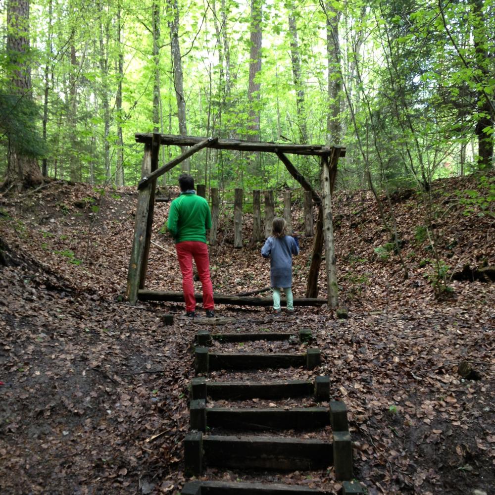 En 1986 el Bosque del Sihl fue declarado parque natural. Foto: Bruny Nieves