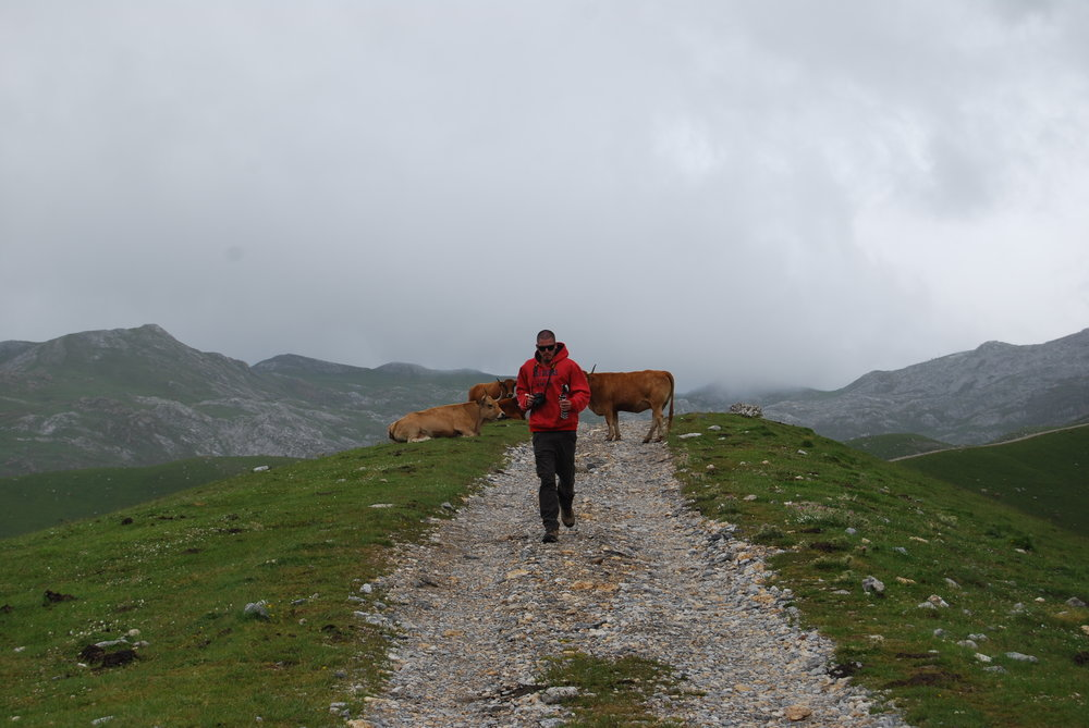 En nuestra excursión, cruzamos los Picos de Europa.
