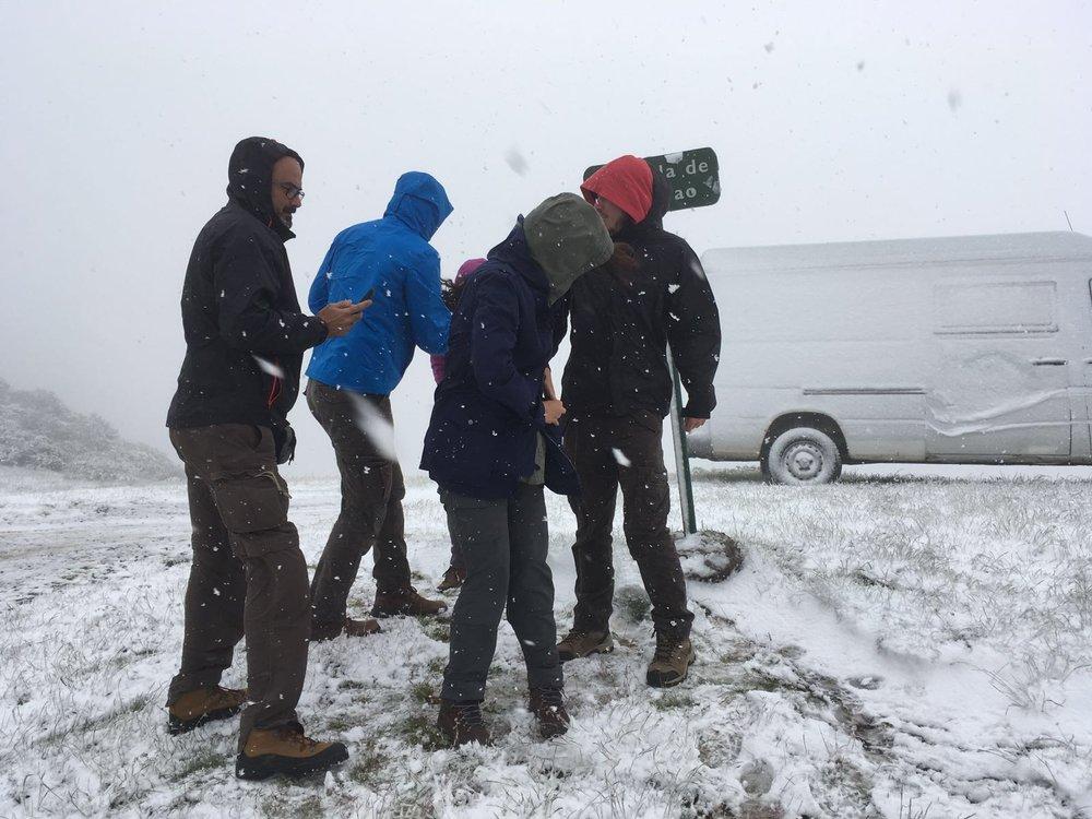 Sí, nos estamos congelando en los Picos de Europa.