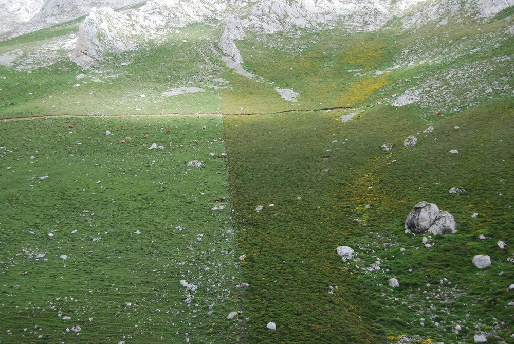En los Picos de Europa cruzamos de Asturias a León, el cambio en vegetación era notable.