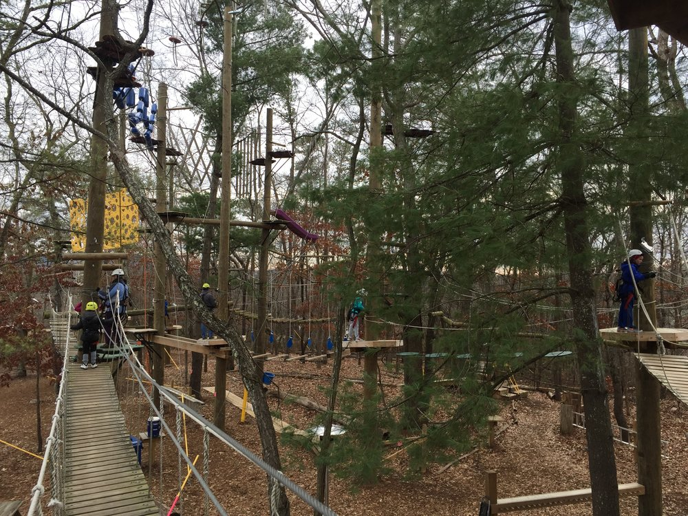In the treetops with Adventure Center of Asheville