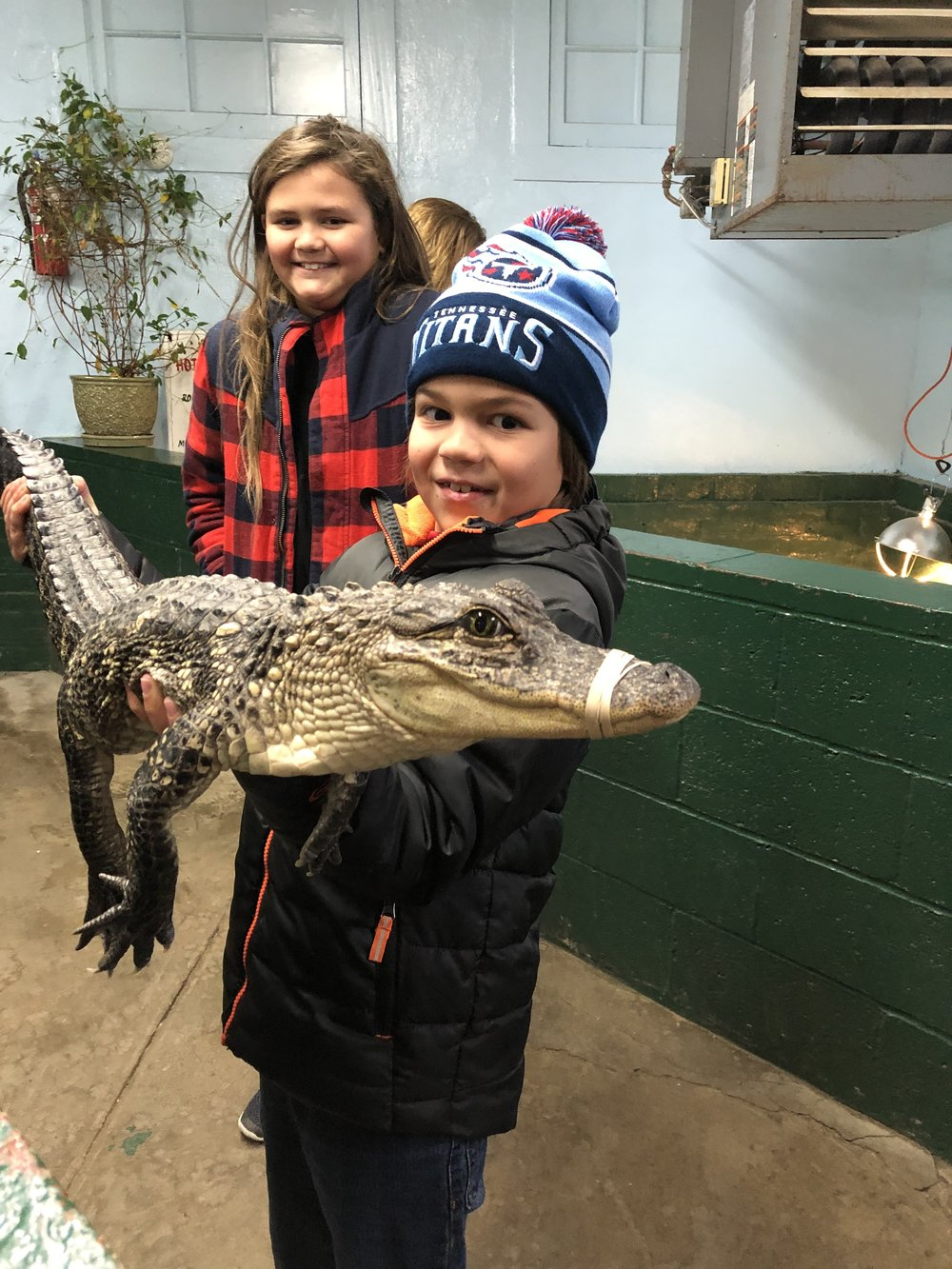 Arkansas Alligator Farm and Petting Zoo, Things to do in Hot Springs, Arkansas via Weekend Trips from Nashville