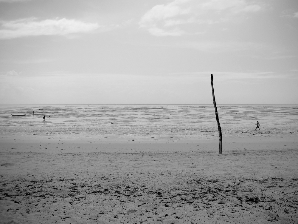 Copyright © 2012, A+B=FilmUnit. All rights reserved. Low Tide.jpg