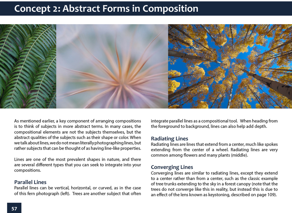 abstract_forms_composition.jpg