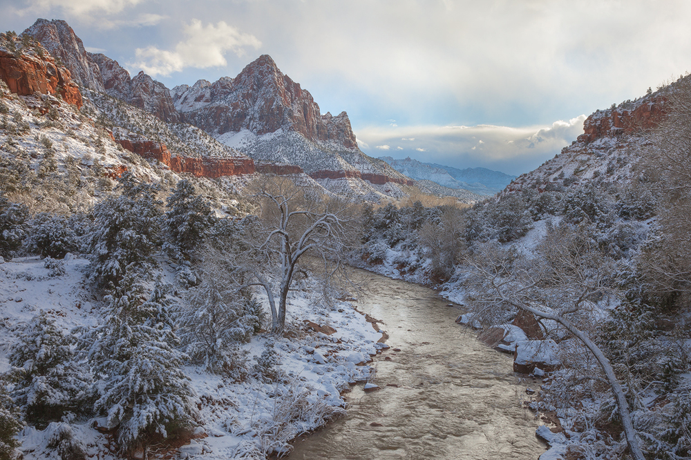 Fresh Snowfall in Zion Canyon