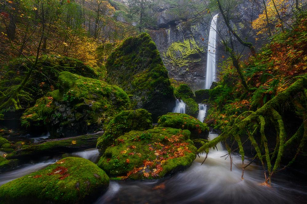 Elowah Falls Autumn