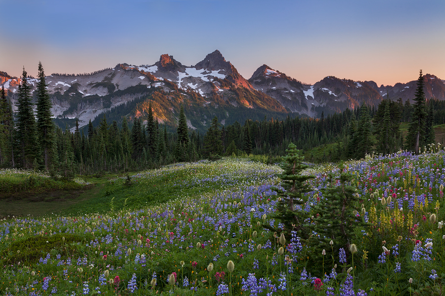 Tatoosh Range during peak wildflowers, Mount Rainier National Park. Canon 5D Mark II, 24-105 lens @ 40mm, f/16, 0.4 sec, ISO 400.