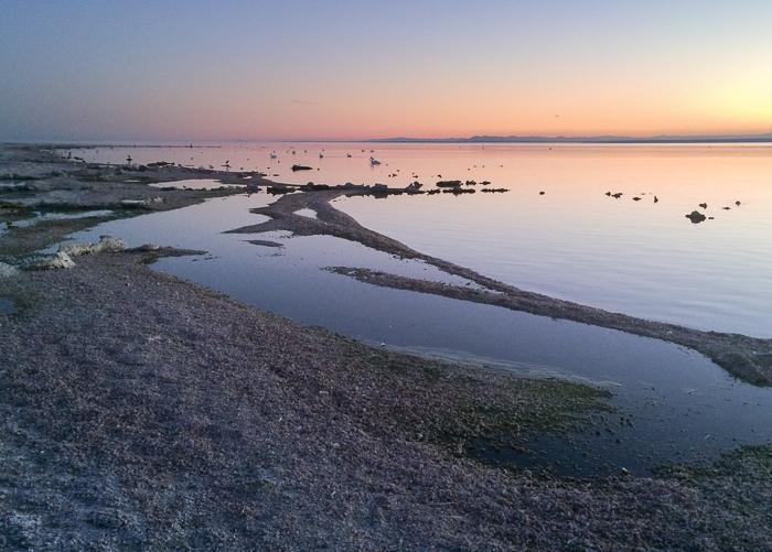 Salton Sea in California at sunset (iPhone)