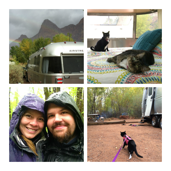 From the upper left... The Airstream in Zion National Park, a peak inside the trailer, hiking in the rain, and a kitty exploring a campsite.