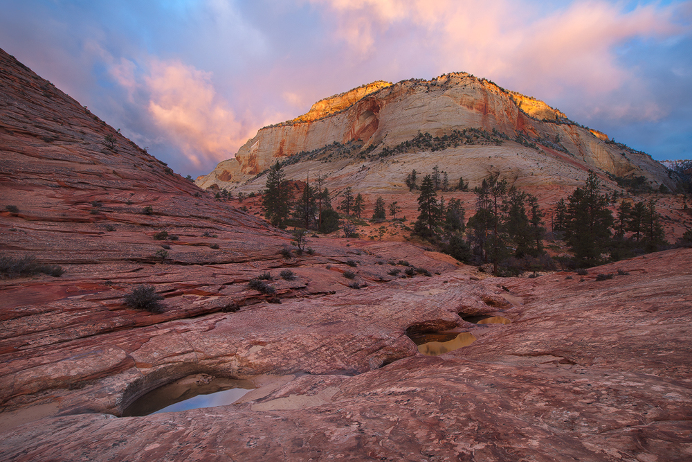 Zion National Park, Utah. (c) Ron Coscorrosa